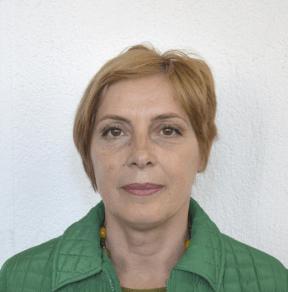 Prof. Ass. Dr. Defrime Berisha